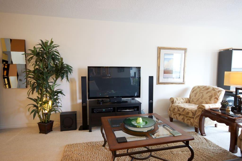 50' Plasma TV with souround sound
