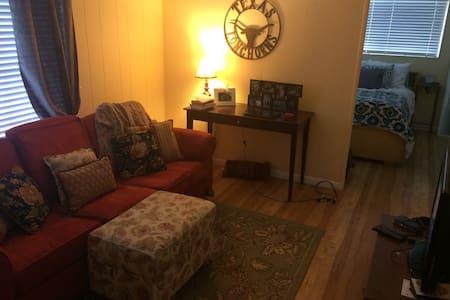 Quaint little Austin apartment