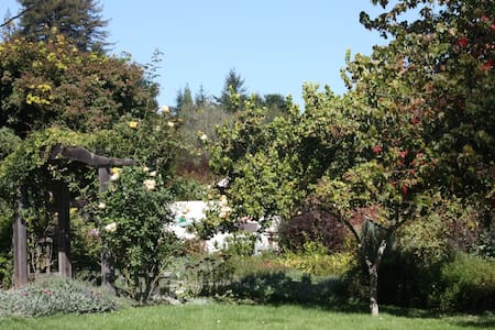 Country Estate Property. Peaceful garden w/acre of roses&fruit trees. Private wing of house with King bed, private bath & entrance.  Friendly Bernese Mtn Dog will happily greet you. Just 3 miles to LaSelva & Manresa State Beach. 20 Minutes to Carmel.