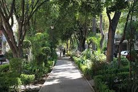 The apartment is located in the heart of Condesa, 10 minutes biking to Chapultepec  a park where you will be able to found a castle, park, zoo,