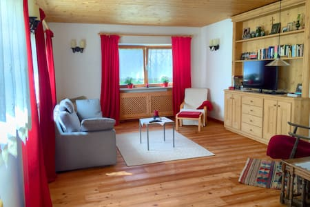 Nice, cozy and comfortable apartment in an elevated sunny and quiet location in Valle di Cadore in the middle of the Dolomites.