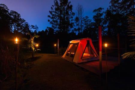 Safari tent experience & Breakfast - Çadır