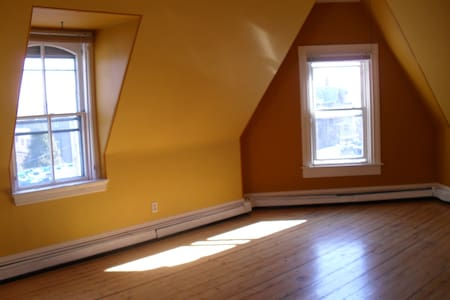 Victorian APT- spacious, historical