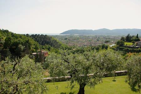 AGAVE B&B: Immersi nel verde con vista sul mare - Carrara - Bed & Breakfast