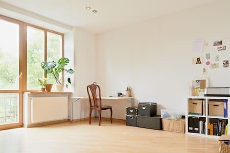 Room+private bathroom in amazing flat. City centre - Vilnius - Apartment