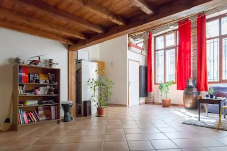 Beautiful apartment in the heart of Lyon - Lyon - Loft