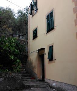 Il poggino - Bonassola - House