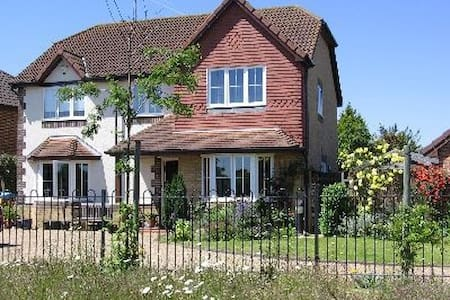 Modern detached family home - East Molesey - House