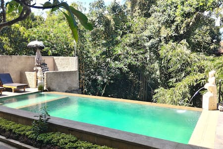 Adipana bungalow is peaceful place with bamboo and river view, located on jembawan road number 27 ubud, near from the sanctuary of Monkey Forest, while Ngurah Rai International Airport is 90 minutes' drive away.