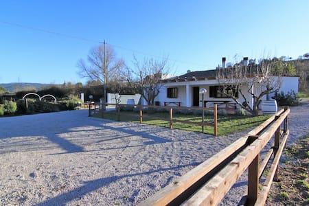 Antico Mulino  ristrutturato - Perfugas - House