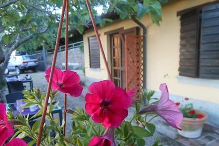 Agri Fontevecchia camera Vetalu - Vetulonia - Bed & Breakfast