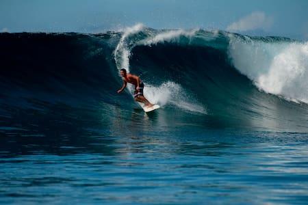 5 nite Surf Camp for 2  All inclusive Qamea -Fiji - Cabanya