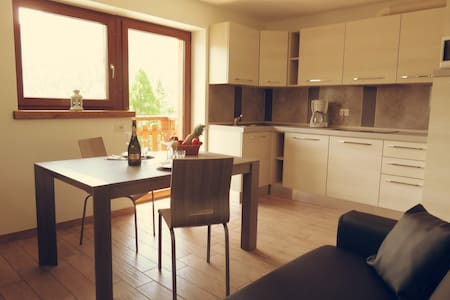 Brand new alpine style apartments, furnished with all the comforts: dishwasher, microwave, fridge, satellite TV, Wi-Fi, private balcony, spacious yard, indoor garage, outdoor parking lot, and storage room.