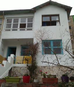 Habitación en casa soleada. Centro