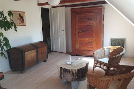 Basnæsgård - Det Store værelse - Stege - Bed & Breakfast