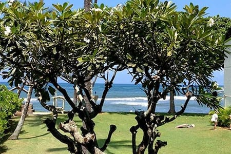 Beach Front Apartment - Haleiwa - Apartment
