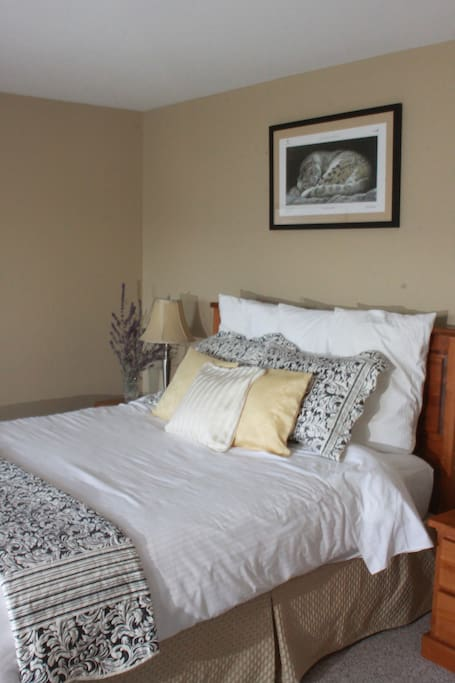 King size pillowtop bed