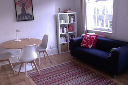 Great cosy flat in central London
