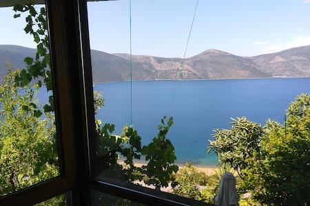 Extraordinary villa sea view - House