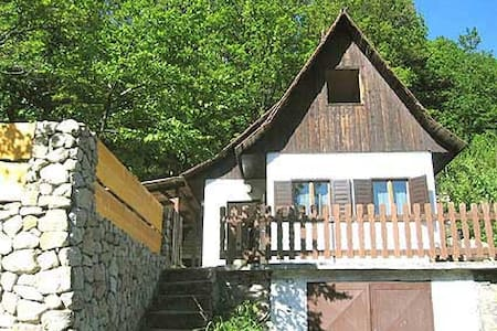 Cottage in forest above Bratislava - Huis