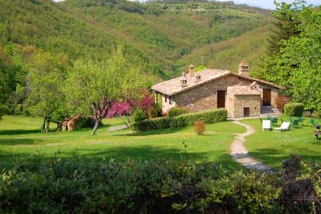 Appartamento in casale, Subasio - Assisi - Apartment