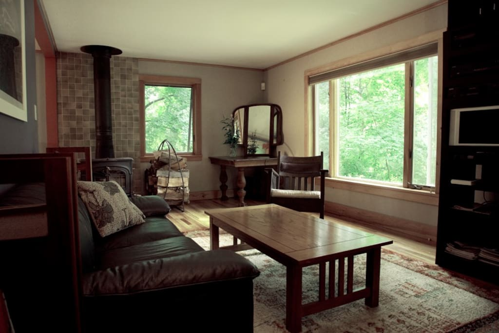Living Room with wood burning stove and windows facing south towards Romer Mountain