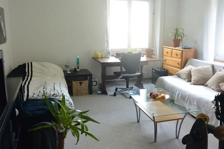 cosy room, 2min from trainstation and lake by foot - Thalwil - Appartement