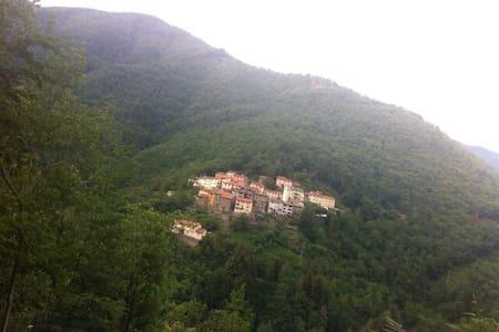 SINGLE HOUSE IN THE GREEN WILD! - Granaglione