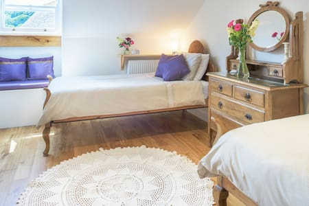 Armsyde B & B Isadora Grape - Padstow