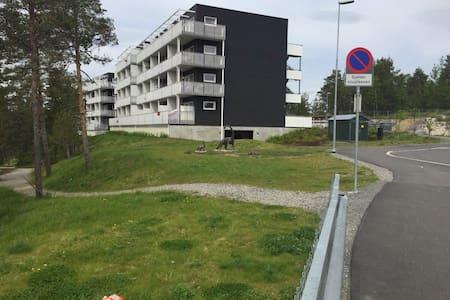 Ny leilighet til leie - Apartment