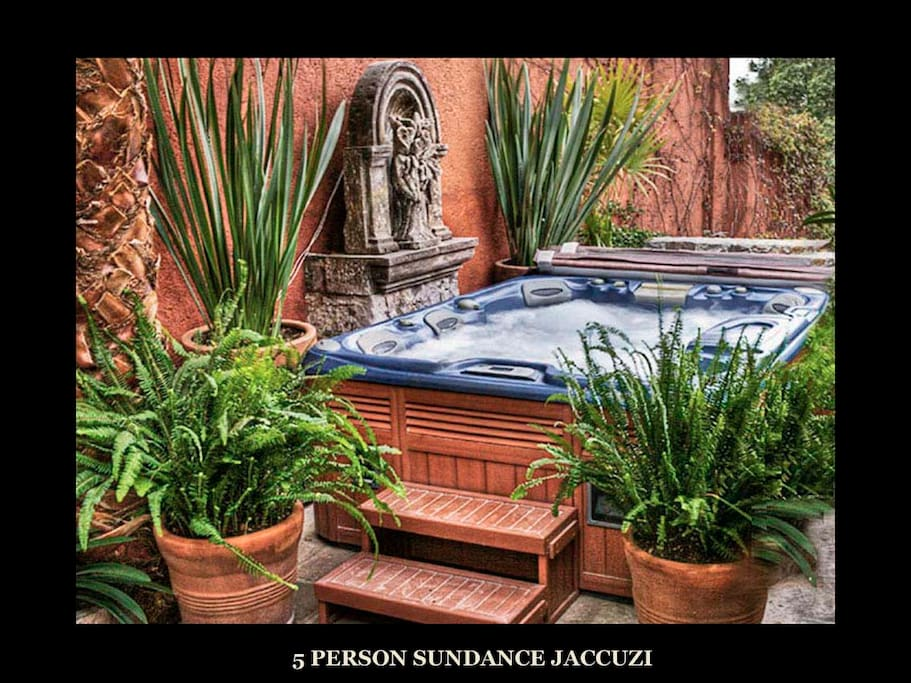 6 person Sundance Jaccuzi