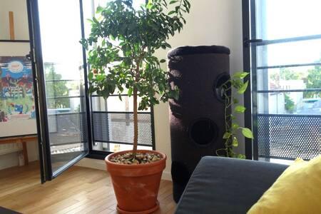 42m² neuf, calme et lumineux - Appartement