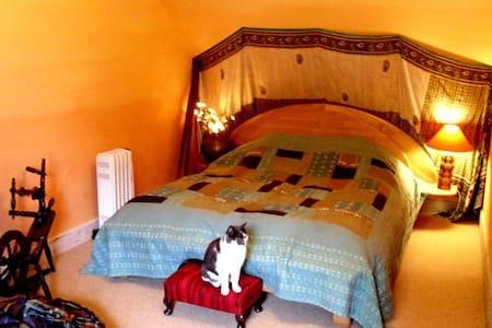 Rennaldburn: Wailele family room - Eskdalemuir, Langholm - Casa