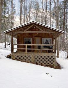 Pet Friendly Mnt Cabin, Hiking #4 - Crozet - Cabin