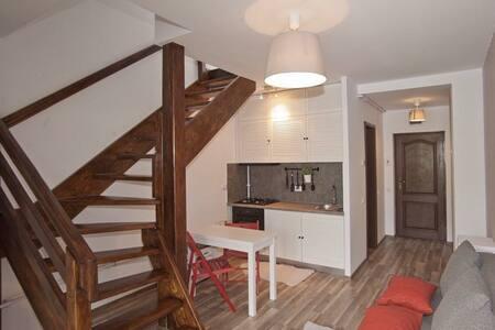 Luxury Duplex Apartment Busteni