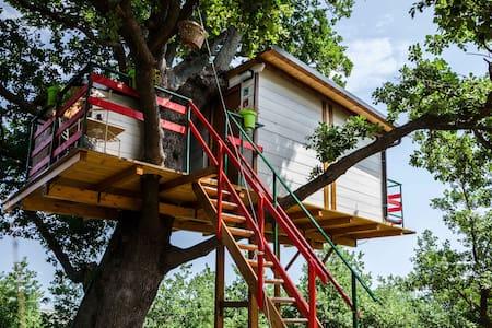 La casa sull'albero - Baumhaus
