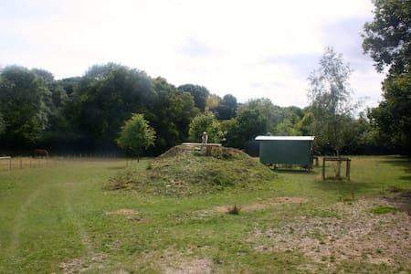 Shepherds Hut in Garden of England - Aldington - Bed & Breakfast