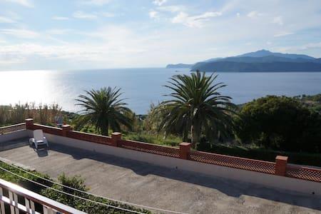 4 Vista sulla Corsica