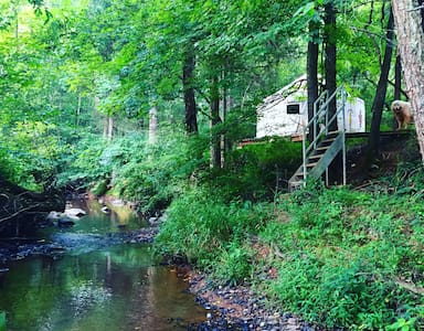 Creekside Yurt on Cane Creek Farm in Saxapahaw - Graham - Yurt