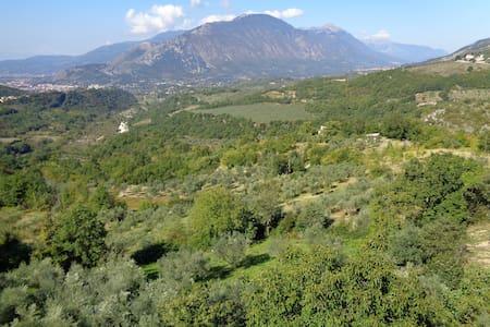 Da Anthea respiri la natura incontaminata, singola - Campoli Appennino - Bed & Breakfast