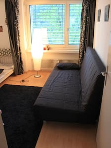 Free room in our flat - Adliswil - Appartement