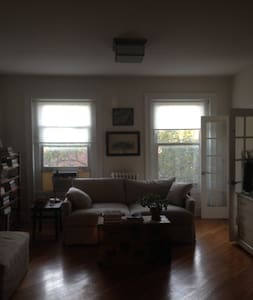Charming, light-filled 1 bdrm is a whole floor in Cobble Hill. Fully restored, bedroom with qn size bed, plus huge deep sofa in the living room. Huge closets, WiFi, on Cobble Hill Park, great views, minutes from Manhattan, museums, restaurants