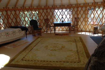 Yurt camping in Doe Bay area - Yourte
