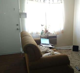 Bright Quiet 1 Bedroom - Apartment