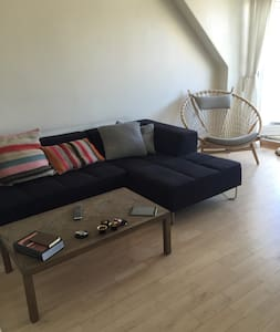 Nice two roomed apartment (60 m2) with balcony. The apartment is close to DTU, a lot of green areas, 5 km from the beach, 10 km from Copenhagen city, and a 5 minute walk from the station.