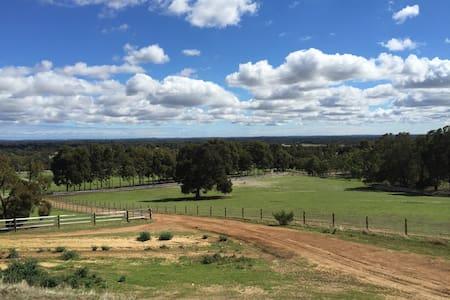 Farm stay , life on a Stud farm - Serpentine