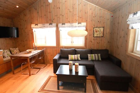 Lovely mountain cabin, ski in/out - Stuga