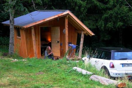 La hutte insolite dans la nature - Blockhütte