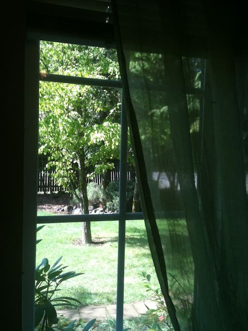 View of the front yard from the bedroom window