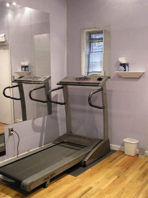 Home gym with fold-up Treadmill...